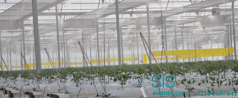 Greenhouse Cooling & Humidification